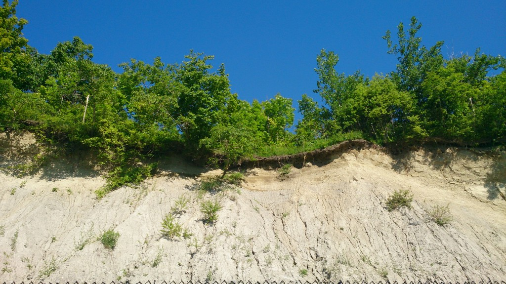 Looking up at the bluffs